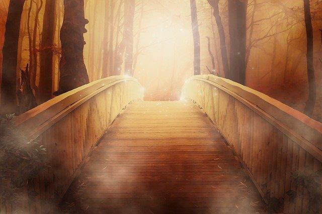 Pont foret imagination
