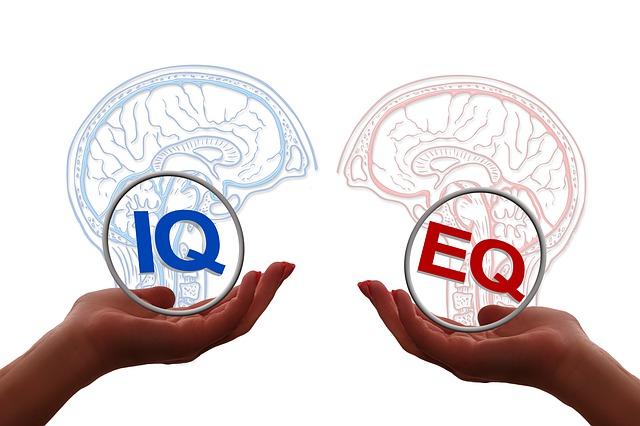 Cerveau QI et QE